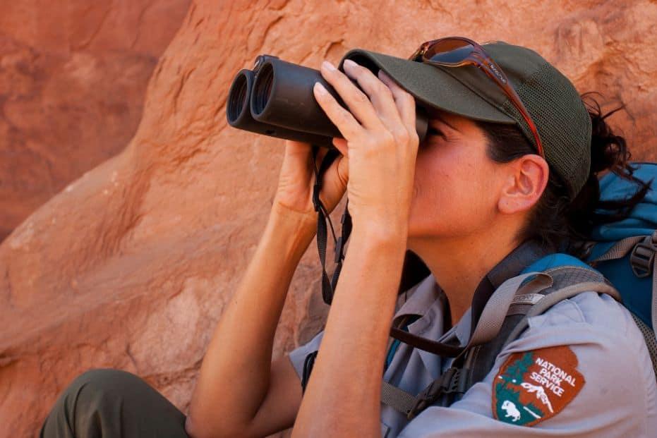 Best 8x42 Binoculars birding