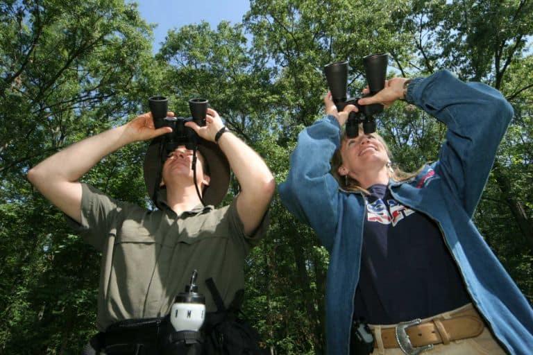 Binoculars Birding
