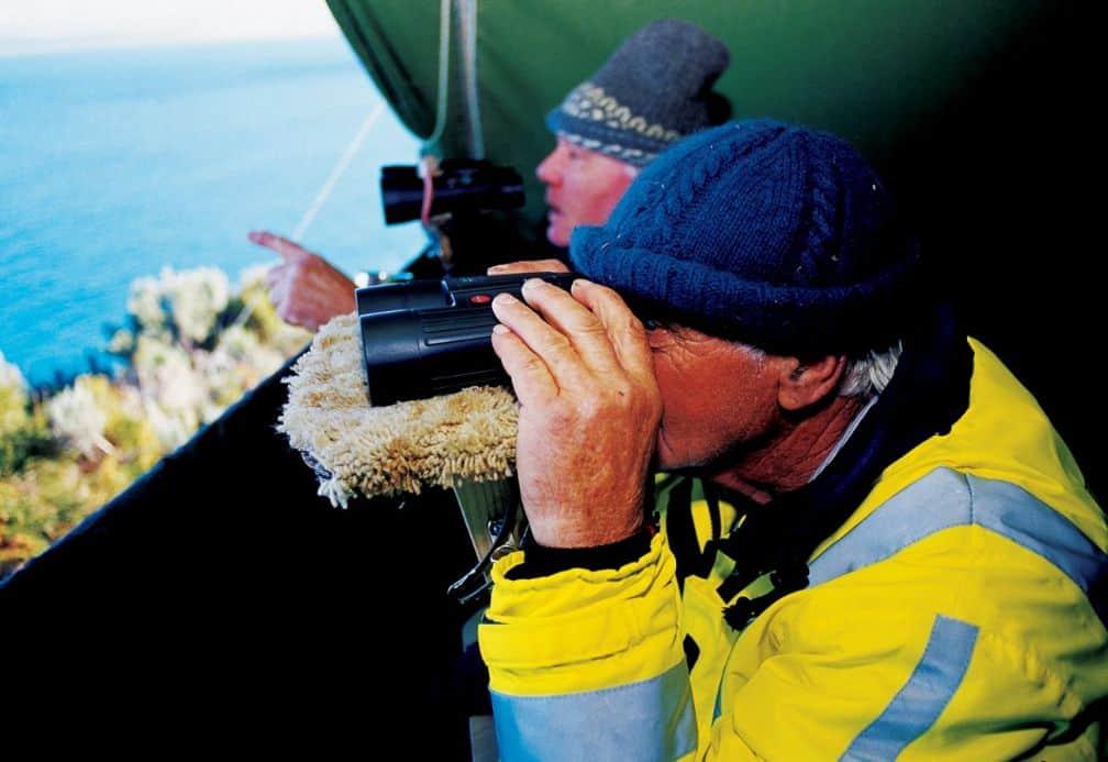 Binoculars Whale Watching