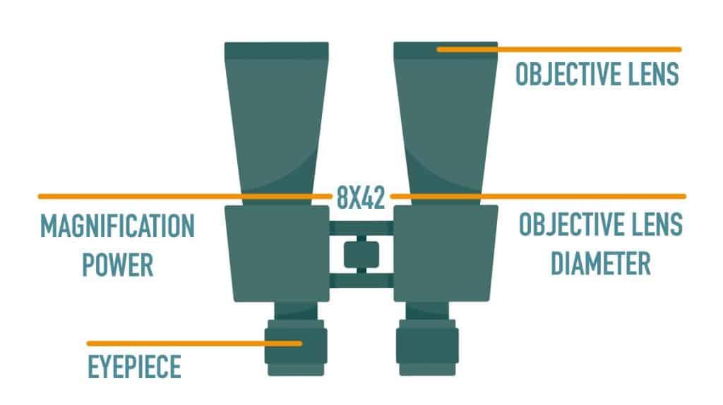 Objective Lens Diameter
