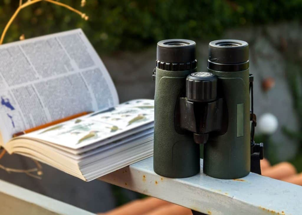What To Look For In The Best UK £200 Binoculars